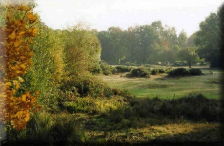 Berkhamsted Golf Club